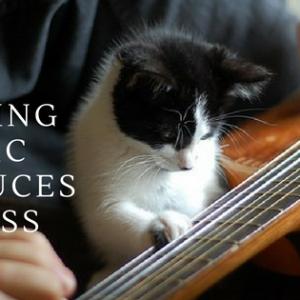 making-music-reduces-stress